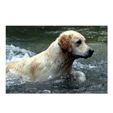 Labradoodle mousepad Postcards (Package of 8)