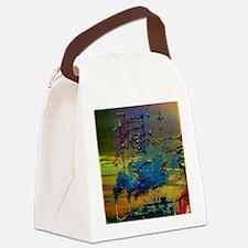 Bed Ridden Man Smoke Stack Edit Canvas Lunch Bag