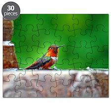007 Puzzle