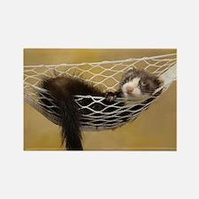 Lounging Ferret Rectangle Magnet