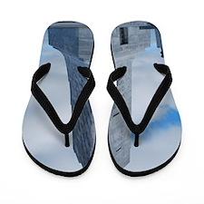 DSC_0102 Flip Flops