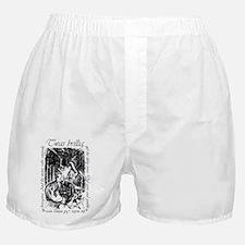 Brilling-iPhone4G-shift Boxer Shorts