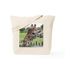 IMG_0227 Tote Bag