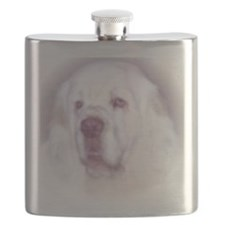 Andy Flask