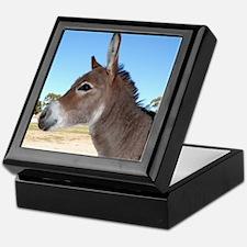 Miniature Donkey Keepsake Box
