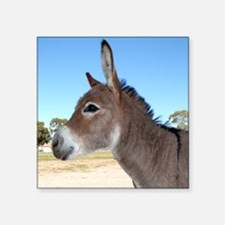 "Miniature Donkey Square Sticker 3"" x 3"""