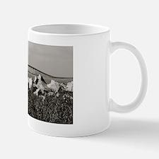 DSC_0138 Mug