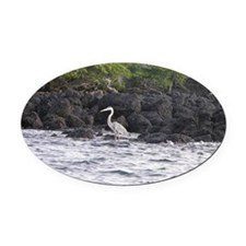 Blue Heron Oval Car Magnet