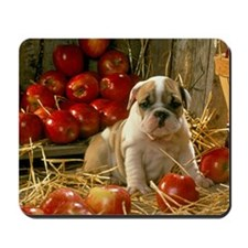 BD Apples greeting Mousepad