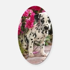 Dalpup journal Oval Car Magnet