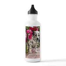 Dalpup journal Water Bottle