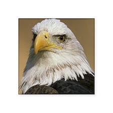 """Eagle tile Square Sticker 3"""" x 3"""""""