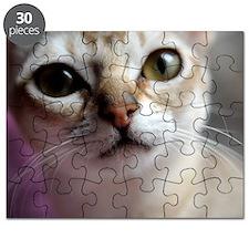 mira Puzzle