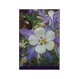 Columbine flower Single
