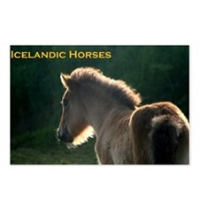 icehorsesbig Postcards (Package of 8)