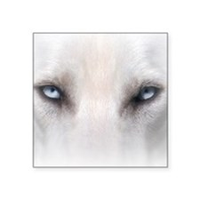 """Blue_Eyes_Feathered_CP Square Sticker 3"""" x 3"""""""
