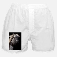 rckymtn_ipad Boxer Shorts