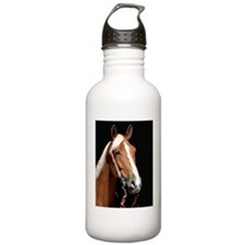 chestnut_ipad Water Bottle
