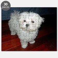 085 Puzzle
