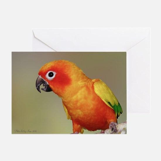 TacocalendarIMG_0002 Greeting Card