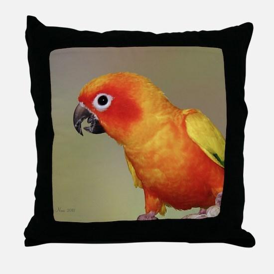 TacocalendarIMG_0002 Throw Pillow