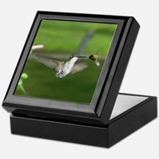 Humming Bird Keepsake Box