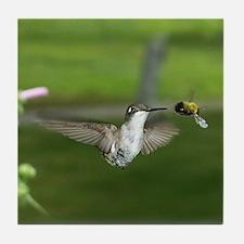 Humming Bird Tile Coaster