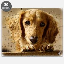 Dachshund 9L007D-15 Puzzle