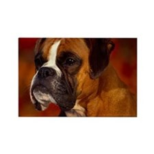Boxer red note Rectangle Magnet