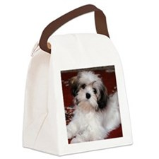 Hav calendar Canvas Lunch Bag