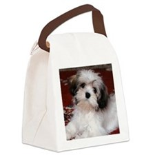 Hav round orn Canvas Lunch Bag