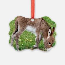 Newborn Donkey Foal Ornament