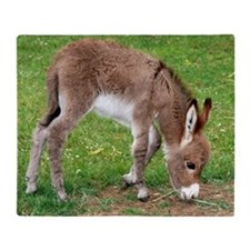 Newborn Donkey Foal Throw Blanket