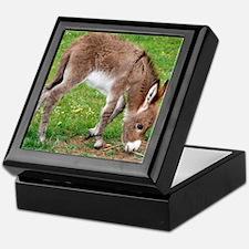 Newborn Donkey Foal Keepsake Box