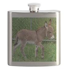 Miniature Donkey Foal Flask