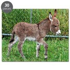 Miniature Donkey Foal Puzzle