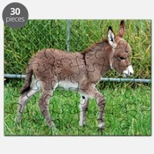 Miniature Donkey Foal Puzzle