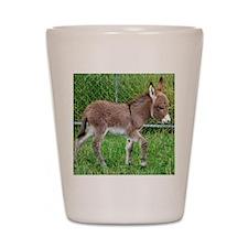 Miniature Donkey Foal Shot Glass