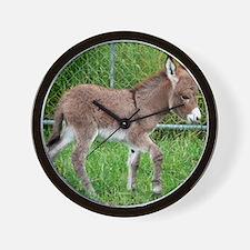 Miniature Donkey Foal Wall Clock