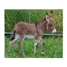 Miniature Donkey Foal Throw Blanket