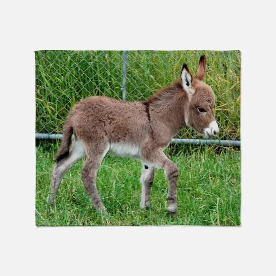 Miniature Donkey Foal Throw Blanket