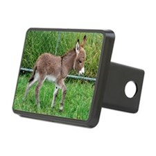 Miniature Donkey Foal Hitch Cover