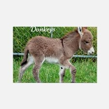 Devoted to Donkeys Rectangle Magnet