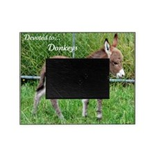 Devoted to Donkeys Picture Frame