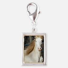 DSCF0233 Magnet Silver Portrait Charm