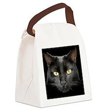 Dangerously Beautiful Black Cat Canvas Lunch Bag