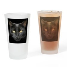 Dangerously Beautiful Black Cat Drinking Glass