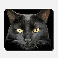 Dangerously Beautiful Black Cat Mousepad