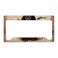 IMG_5204-nov2010 License Plate Holder