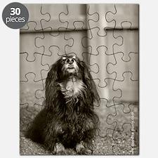 IMG_4746-nov2010 Puzzle